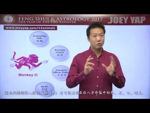 2017 Animal Sign Forecast MONKEY