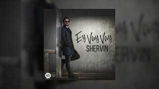 Shervin - Ey Vay Vay OFFICIAL TRACK | شروین - ای وای وای