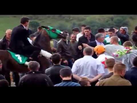 Konjska trka Restelica 2014
