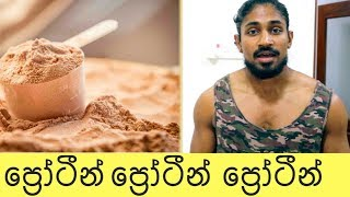 All about protein in sinhala - bodybuilding - gym - fitness - health