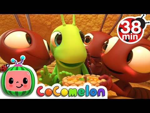 Xxx Mp4 The Ant And The Grasshopper More Nursery Rhymes Amp Kids Songs CoCoMelon 3gp Sex