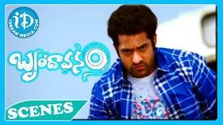 Brindavanam Movie - Ajay, Jr NTR Fight Scene