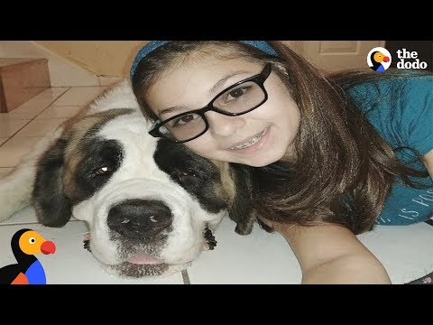 Xxx Mp4 Girl Losing Vision Was Lonely Until She Met This Dog The Dodo 3gp Sex