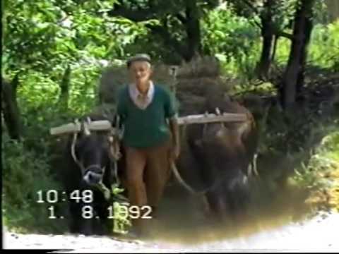 Orijinal öküz arabası 1992