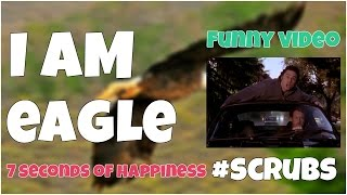 I am eagle funny episode🔸 7 second of happiness FUNNY Video 😂 #353