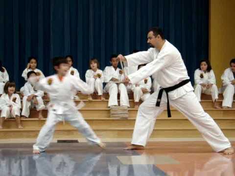Xxx Mp4 Austin Shotokan Karate Academy Demonstration At Blazier Elementary Board Breaking 1 MPG 3gp Sex