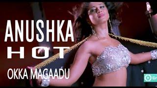Anushka Hot in Okka magaadu