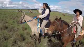 Argentina Estancia to Estancia Horse Ride