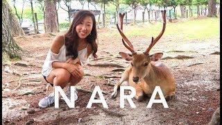 NARA VLOG (Deer Park + Owl Cafe)
