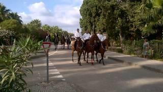 attenzione al cavallo imbizzarrito