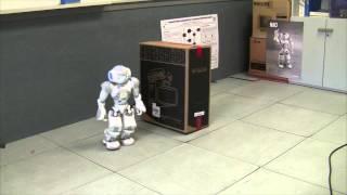 Autonomous Robots. PELEA and NAO