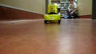 Hamster Driving Car