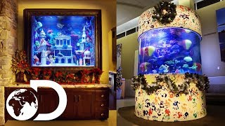 The Ultimate Christmas Fish Tanks! | Tanked