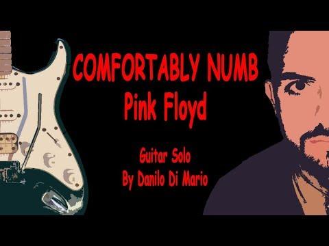 Xxx Mp4 HOT SOLOS COMFORTABLY NUMB Pink Floyd Danilo Di Mario Guitar Solo 3gp Sex