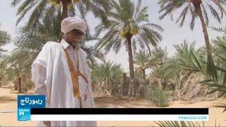 ...موريتانيا.. مهاجر سابق يستخدم واحات أجداده للحد من هج