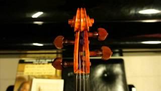 Italian Maestro violin maker Renato Scrollavezza 1