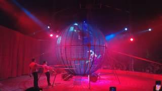 Curcus