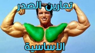 تمارين الصدر | (الاساسية) ارلوند شوارزنجر وحصول على ضخامة عالية جودة كمال الاجسام