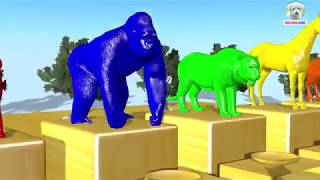 Learn Colors Animals Jumping Swimming Pool and Eat Sausages Color Cartoon for Children
