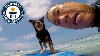 Abbie Girl: Longest wave surfed by a dog - Meet The Record Breakers