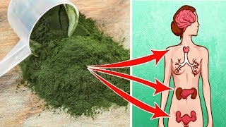 See What Happens When You Take A SpoonFull Of Spirulina Everyday