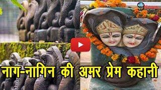 भारत का विचित्र मंदिर जहां पूजा जाता है नाग-नागिन के जोड़े को… | REVEALED: Naag-Naagin Temple Mystery