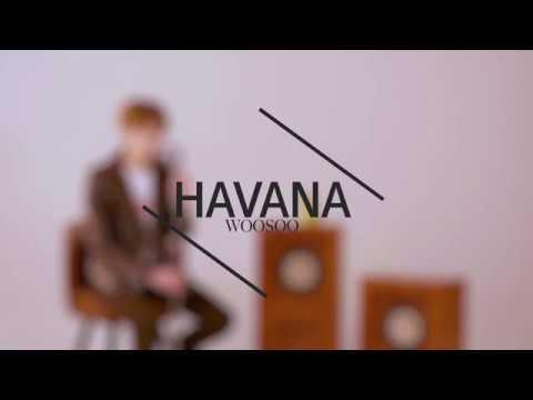 Xxx Mp4 Camila Cabello Havana Cover By WooSoo 3gp Sex