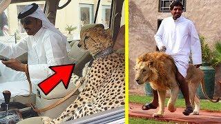 10 أشياء مدهشة لن تراها إلا في دبي فقط !