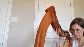 """""""A Mother's Love"""" by Lisa Warren Harp Original Introducung new Harp Stoney End Braunwen"""