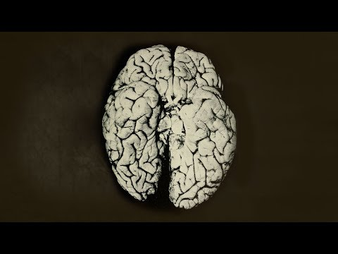 Xxx Mp4 A Scientist Spilled 2 Drops Organic Mercury On Her Hand This Is What Happened To Her Brain 3gp Sex