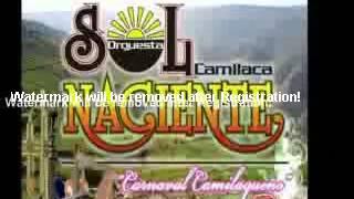 Charapita Exito 2012 - Orquesta Sol Naciente de Camilaca