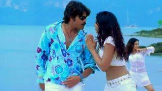 Boss Movie Songs - Hello Baasu - Nagarjuna Nayantara Poonam Bajwa