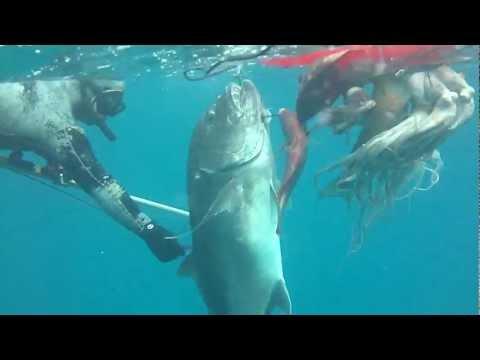 Hawaii Spearfishing More Sick Ep.32