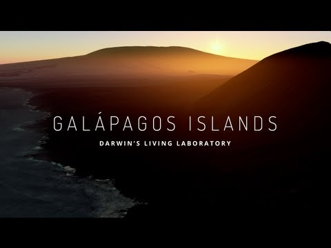 Xxx Mp4 Explore The Galapagos Islands With Google Maps 3gp Sex