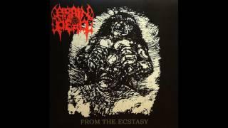 Brain Dead - From the Ecstasy (Full Album)