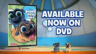 Puppy Dog Pals DVD | Disney Junior