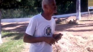homem cantado e tocando gaita muito engraçado
