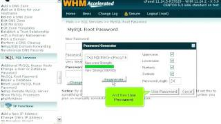 How to change the root MySQL password in WHM
