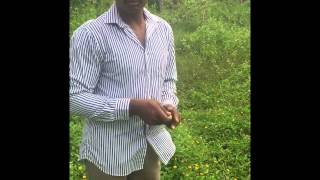 water divining using coconut and pendulam