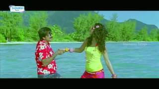 Veera Telugu Movie Songs   O Meri Bhavri Video Song   Ravi Teja   Taapsee   Shemaroo Telugu