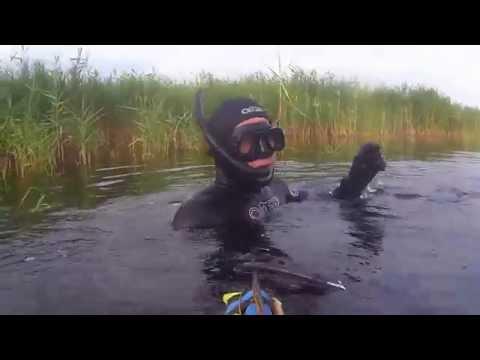 подводная охота за сомами видео