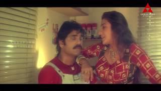 Sisindri Movie || Nagarjuna & Tabu Romantic Love Scene