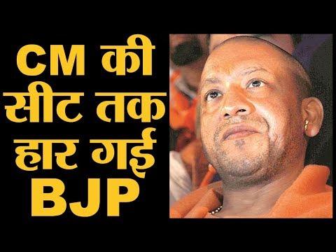 Xxx Mp4 2019 में BJP को हराने का फॉर्म्युला जीत गया Gorakhpur Phulpur Byelection Yogi Adityanath 3gp Sex