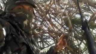 Caçada de Pomba Avoante e videos dos abates.