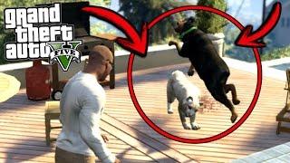 ¿Qué pasa si Chop se enfrenta con un puma? - GTA 5