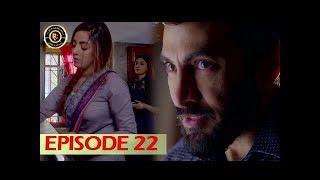 Shiza Episode 22 - 19th August 2017 - Sanam Chaudhry - Aijaz Aslam - Top Pakistani Drama