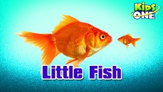 Little Fish || Hindi Animated Stories || Kids Animated Stories