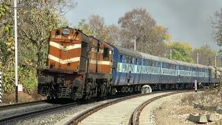 ULTIMATE DIESEL in JUNGLE : EXTREME SOUNDS : Vindhyachal Express with KTE WDG3A : INDIAN RAILWAYS