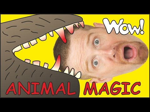 Animal Magic with Maggie and Steve | English Stories for Kids | Wow English TV