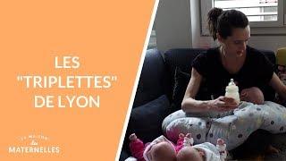 Les triplettes de Lyon  - La Maison des maternelles #LMDM